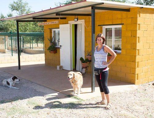 Residencia Canina 3 Patas