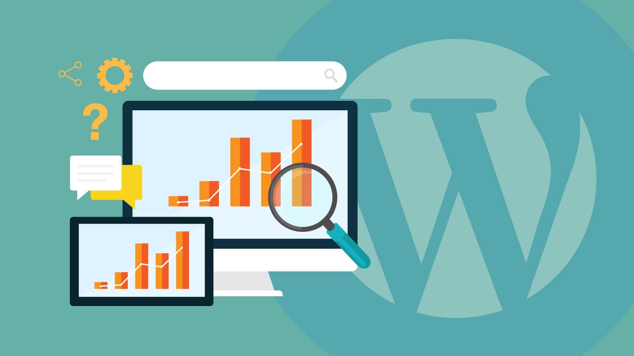 Imagen de análítica SEO y Wordpress